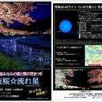夜桜★流れ星